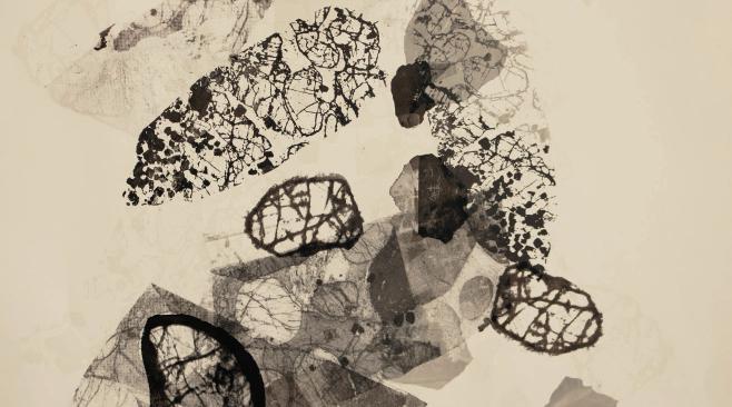 Kaitlin Ferguson detail from disintegration-accumulation 2019