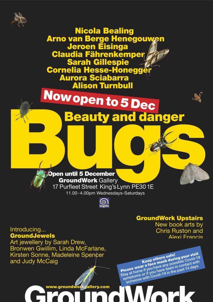 Bugs revised flier