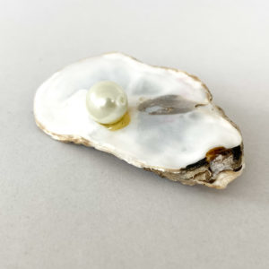Shell and Pearl Brooch