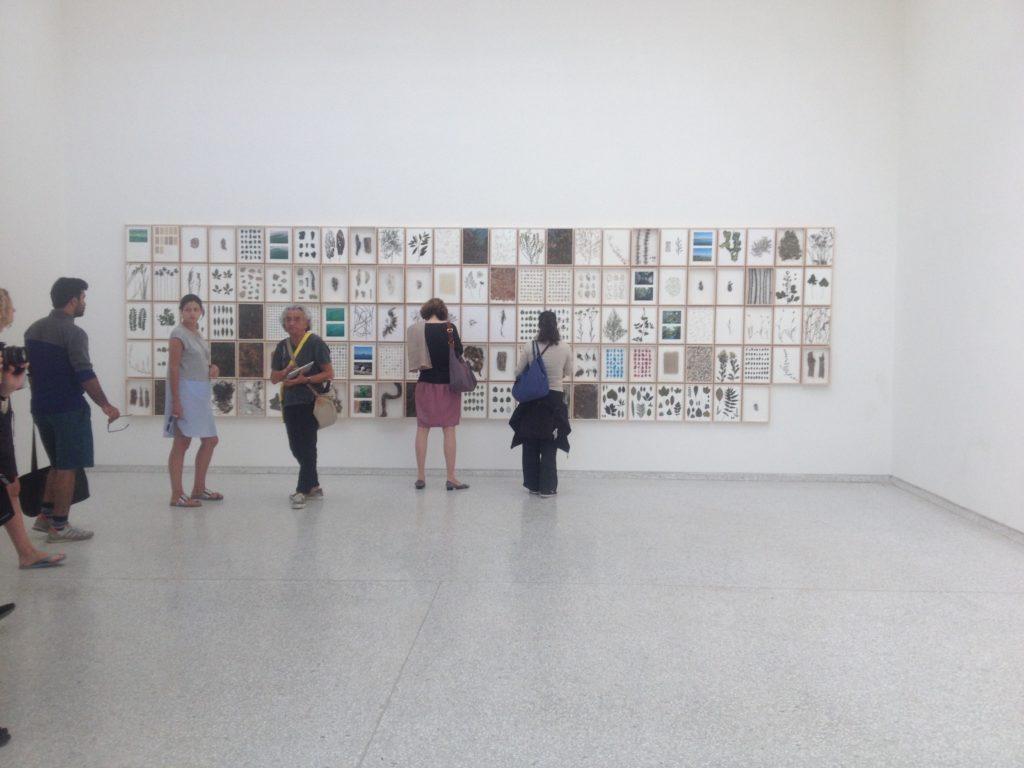 Natherlands pavilion Venice Biennale 2015