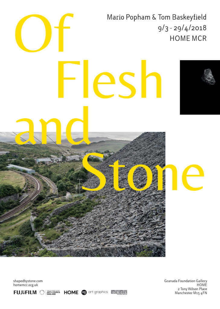 Tom Baskeyfirld and Mario Popham Flesh and Stone poster