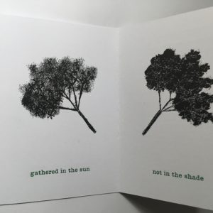 Coracle Press books about nature: Elderflower