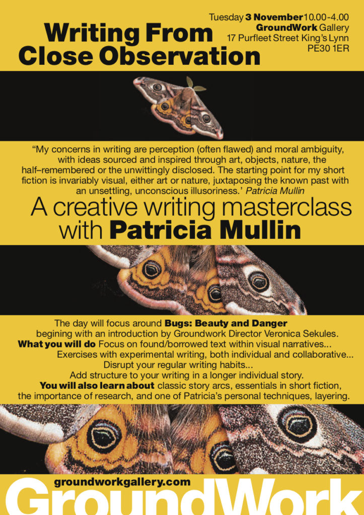 Writing from close observation patricia mullin