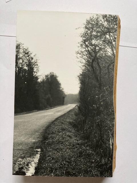 Lotte Scott: Along the Road 1
