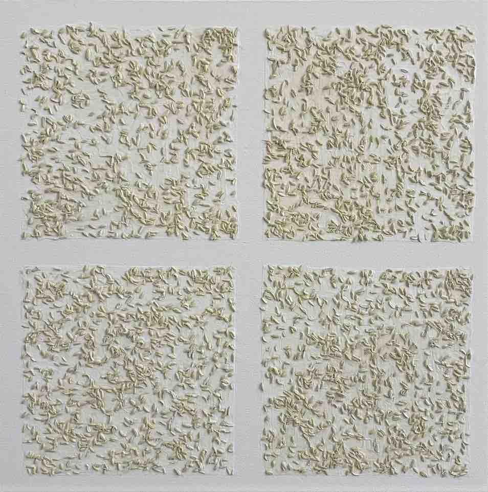 Isao Miura Rice paddy series, nursery