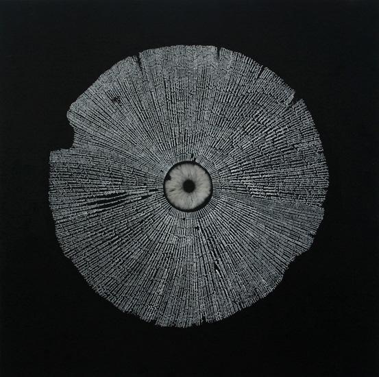 Nature's Mysterious Networks, Chris Drury Amanita Phalloides
