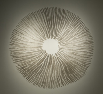 Nature's mysterious networks, Chris Drury Spore Print